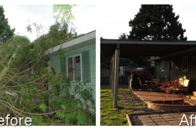 Tree Damage Restoration Cornerstone Disaster Repair